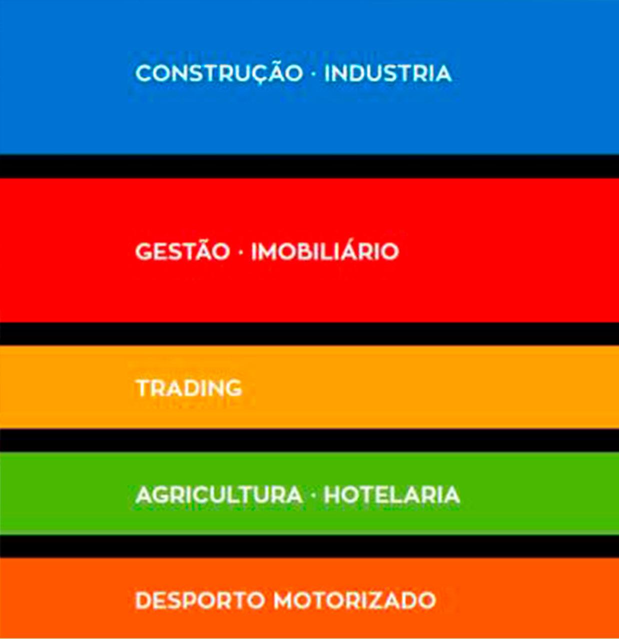 Nova organização do grupo em 5 Áreas de atividade